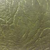 barvy krytu vířivky 9